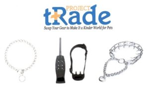 Project Trade: Revisited