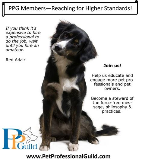 30 Reasons to Join the Pet Professional Guild