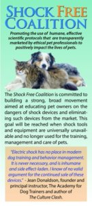 An Open Letter to Veterinarians on Referrals to Training and Behavior Professionals: Recommended Best Practices